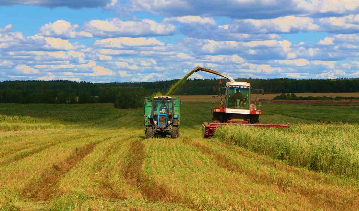 zemli-seзамли сельскохозяйственного назначения