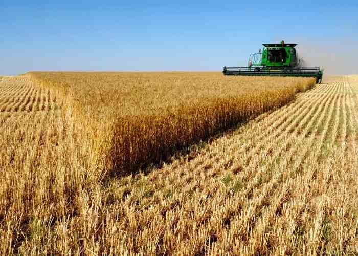 земли для ведения сельского хозяйства